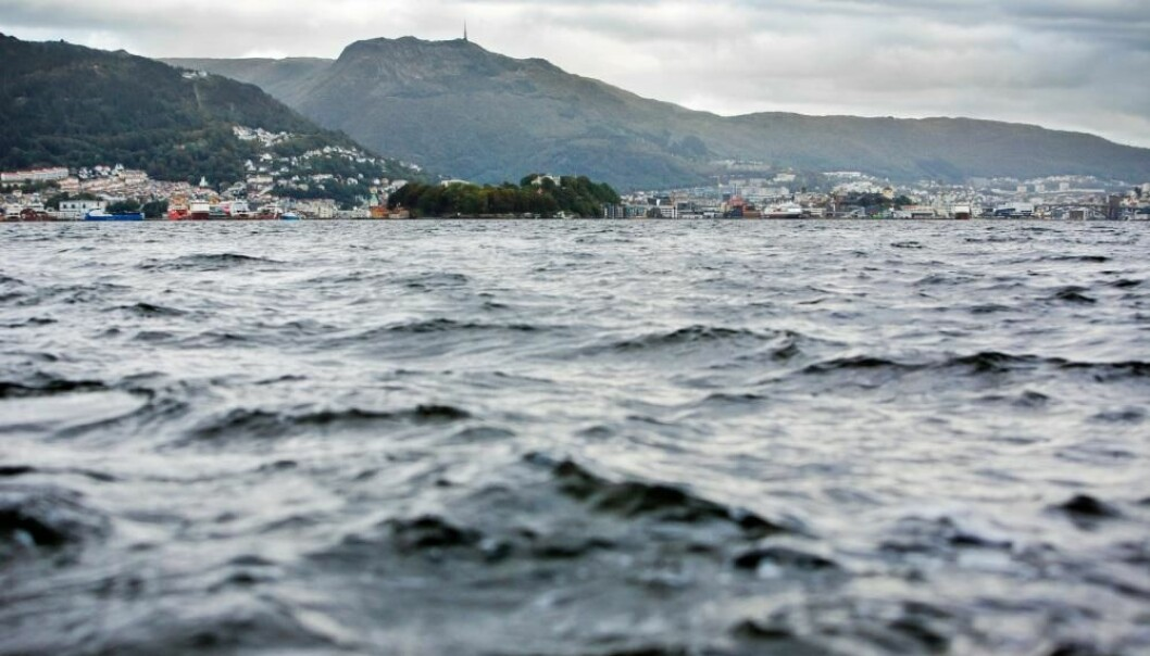 11. november er det klart for Ocean Sustainability Bergen Conference 2020.
