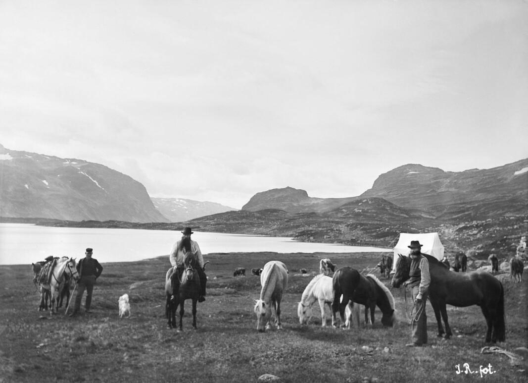 Feltarbeid i Vivasdalen på Hardangervidda i 1900.