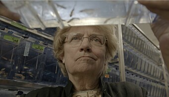 MIT biologist Nancy Hopkins, who led a movement for change for women within academia, is featured in the new independent film Picture a Scientist.Click to add image caption