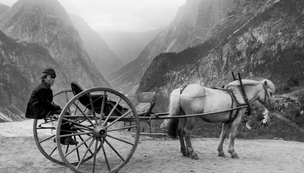 Kariol, Stalheim ca. 1895, fotograf Knud Knudsen (UBB-KK-1622-08831)