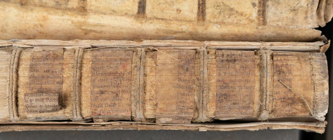 Bokrygg av Lexicon Ebraicum som blant annet består av middelalderske pergament-fragmenter.