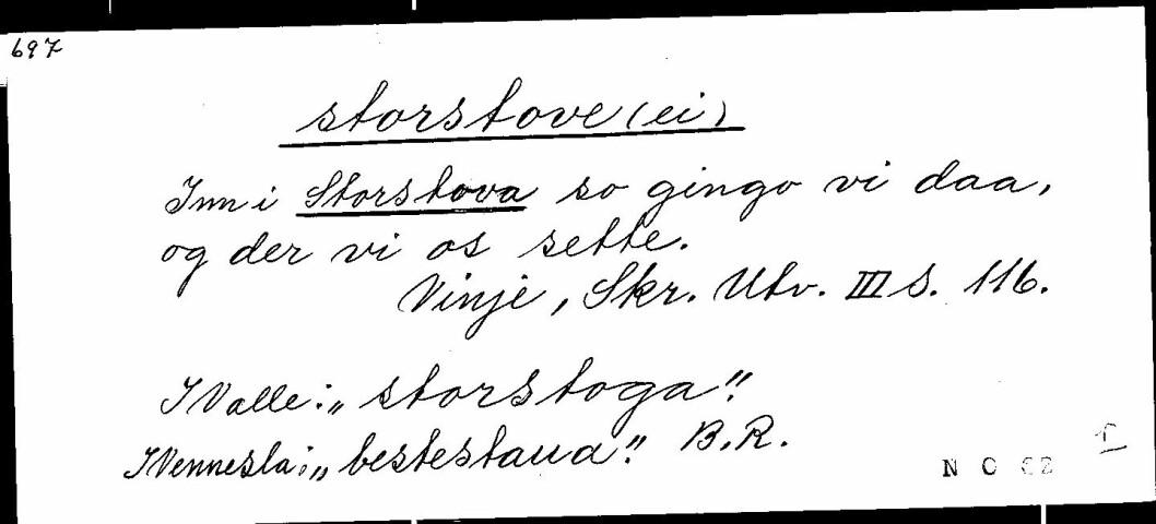 Setel med oppslagsord storstove skriven av Bergit Rike.
